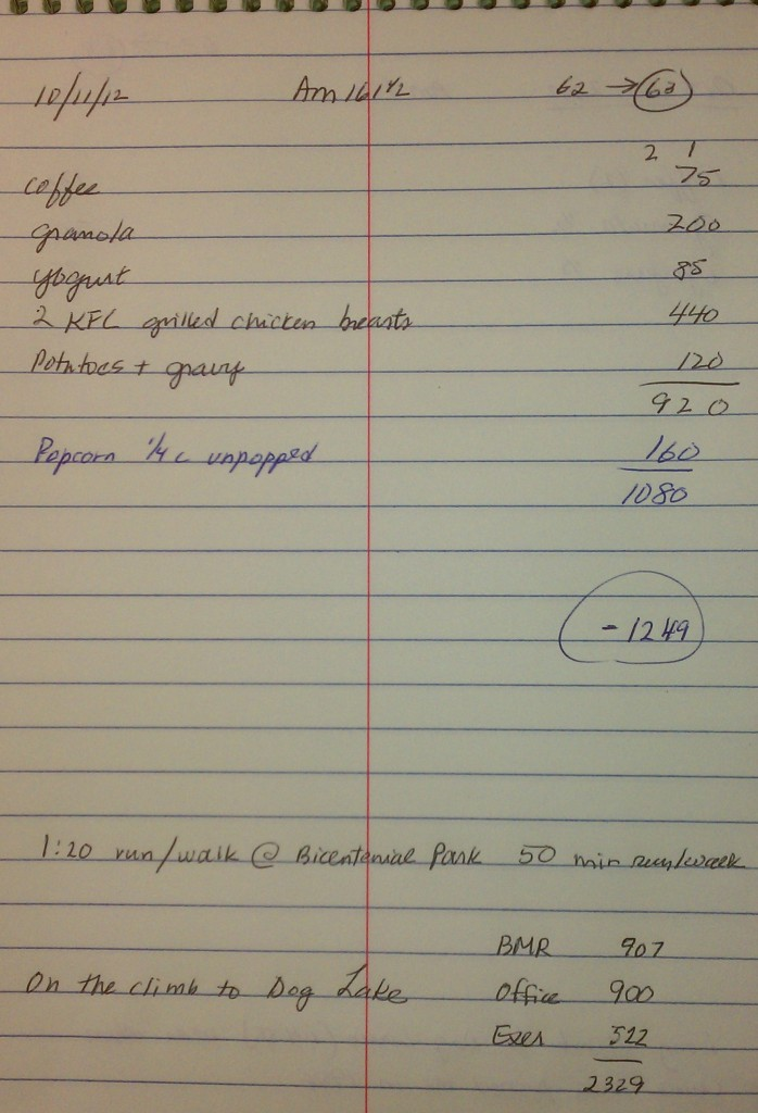 Wasatch 100 Diet Plan at Mile 63 - Calculations